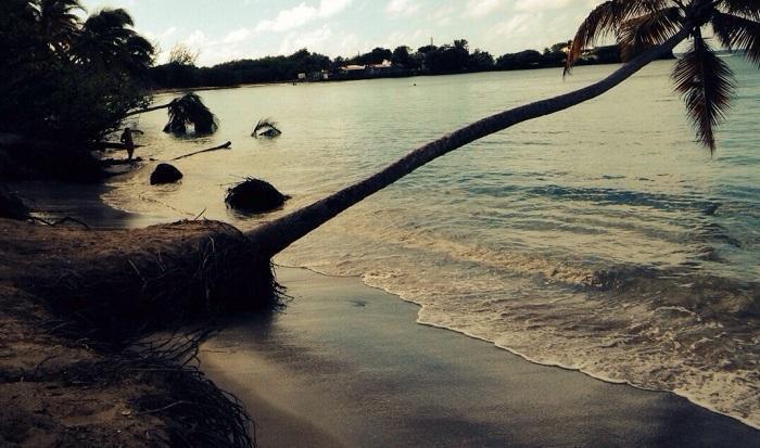 """Érosion de la plage des Salines : """"On perd du sable"""""""