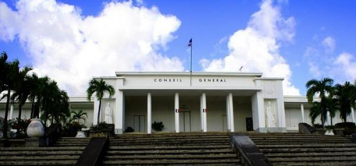Plénière départemental : l'insertion une priorité