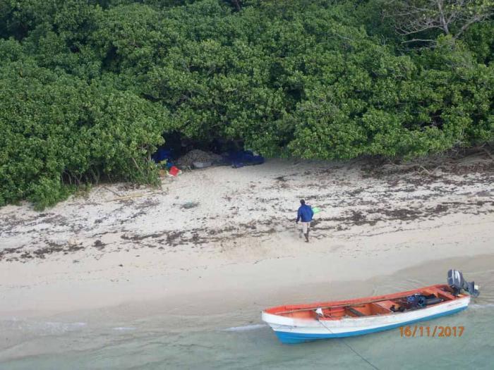 Pêches aux oursins : quatre braconniers sanctionnés