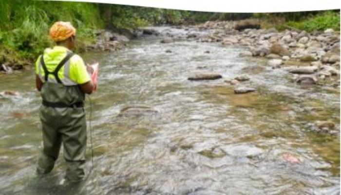 Qualité de l'eau en Martinique : l'inquiétant bilan de l'ODE