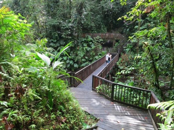 « Rando Guadeloupe », un portail internet de la randonnée