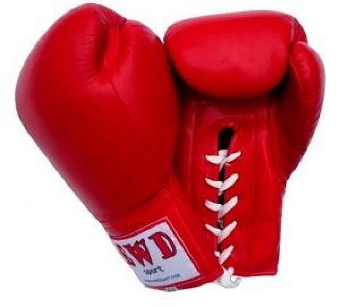 Remy Vectol remporte la 11 ème édition de la nuit de la boxe