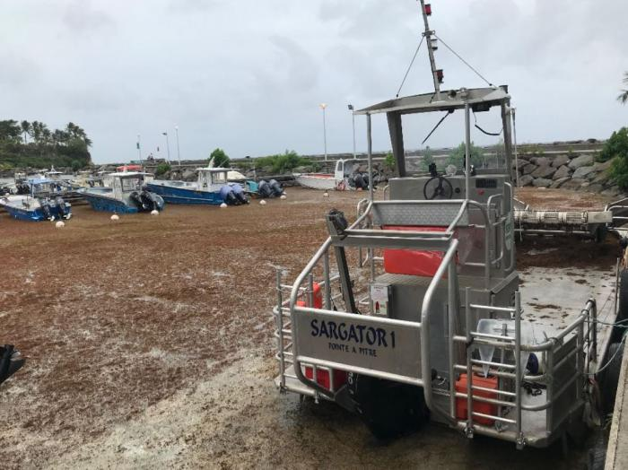Sargasses : situation de crise sur le port de pêche de Saint-Félix