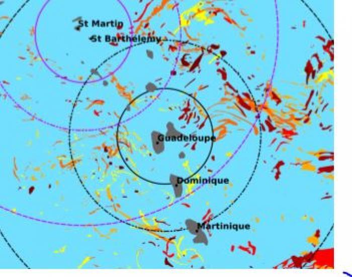 Sargasses : un risque d'échouage fort pour la Guadeloupe, Marie-Galante et la Désirade