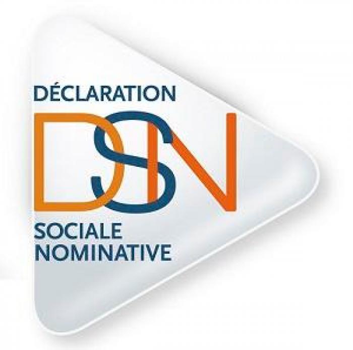 Simplifier la vie des entreprises avec la Déclaration Sociale Nominative