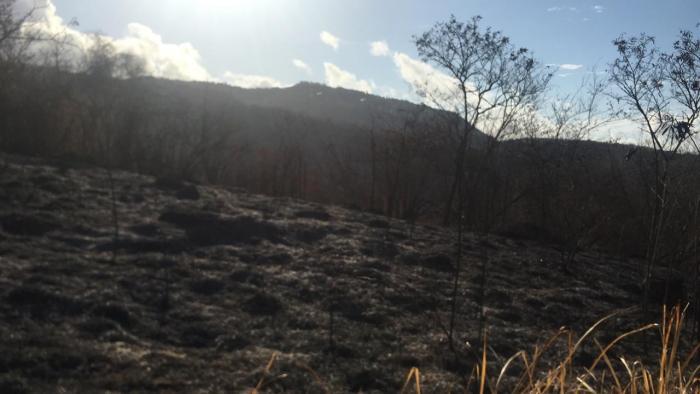 Sécheresse : la préfecture réitère ses recommandations pour prévenir les incendies