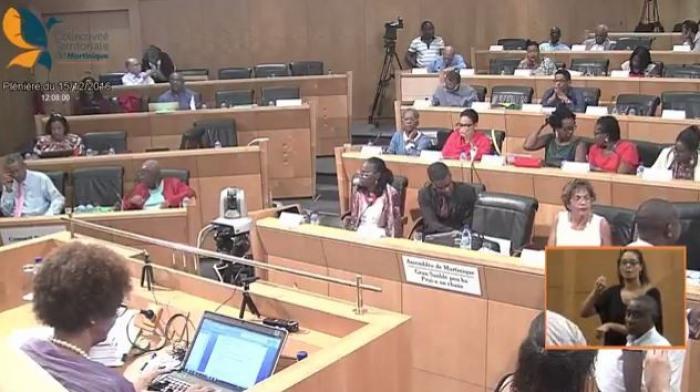 Suivez la séance plénière de la CTM en direct vidéo