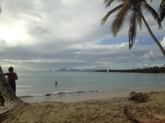 Tourisme et zika : Les professionnels parlent de 800 000 euros de pertes !