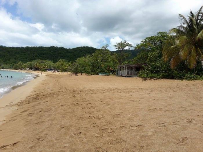 Travel Agents Choice Award : une récompense de plus pour la Guadeloupe