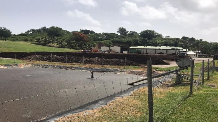 Trois entreprises sont autorisées à produire du compost avec des sargasses