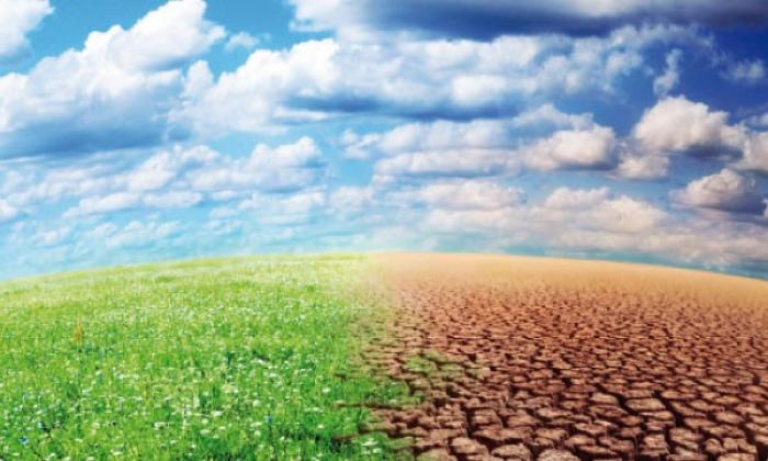 Trois jours pour débattre du développement durable