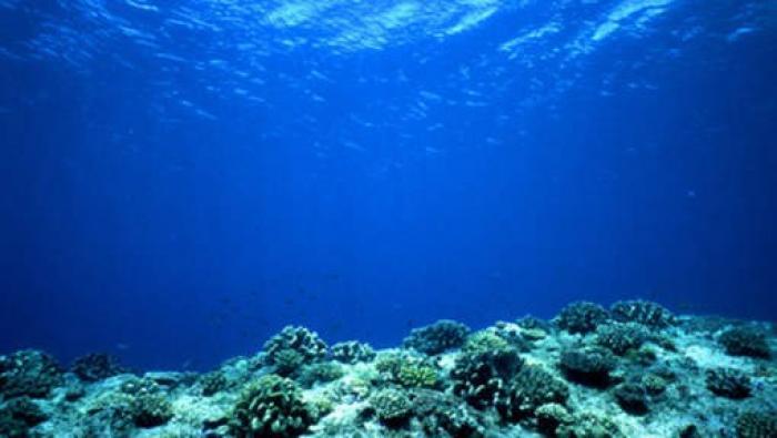 Trois jours pour nettoyer les fonds marins