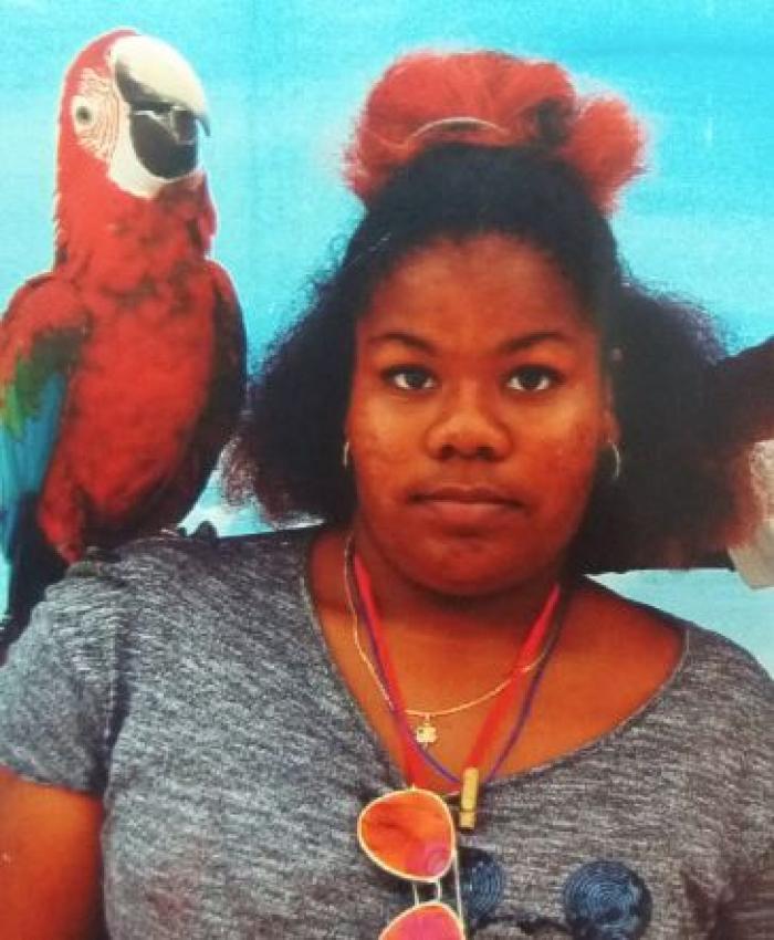 Un appel à témoin pour retrouver Ludivine âgée de 15 ans