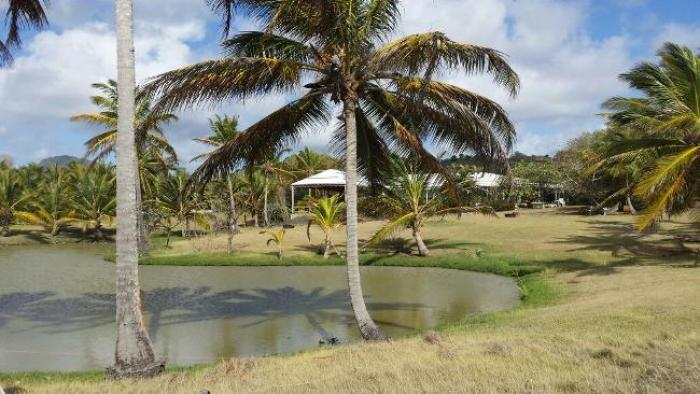 Un colloque autour de la question du foncier en Martinique