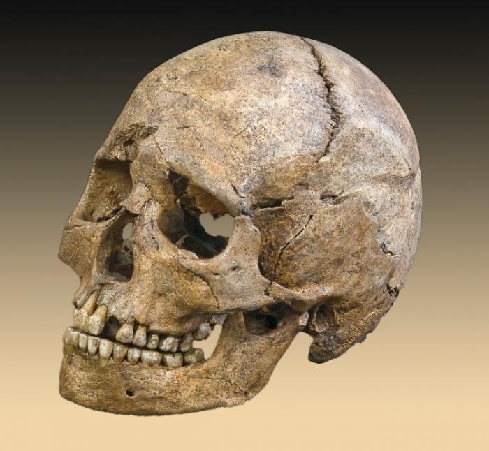 Un corps à l'état squelettique découvert samedi.