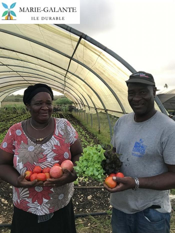 Un couple d'agriculteurs mis à l'honneur à Marie-Galante