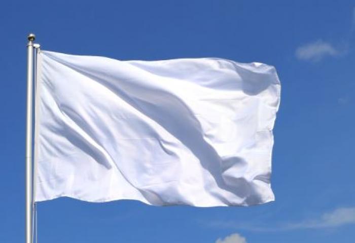 Un drapeau et un hymne pour la Martinique : la consultation qui divise