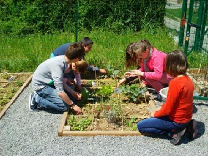 Un jardin pédagogique ouvre ses portes au Vauclin