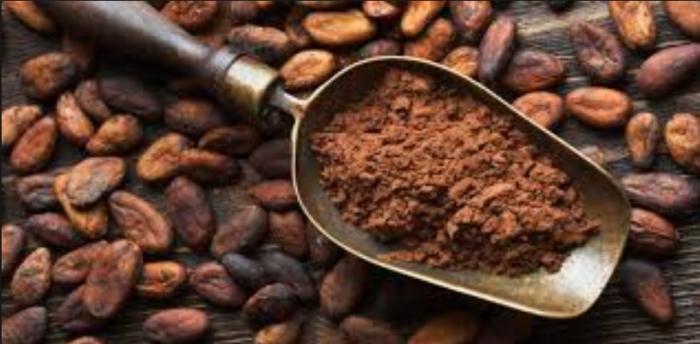 Un nouveau souffle pour la filière cacao