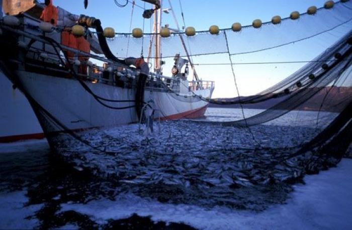 Un pêcheur pris dans les filets de la Justice