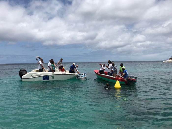 Un sentier sous-marin inauguré aux Anses-d'Arlet