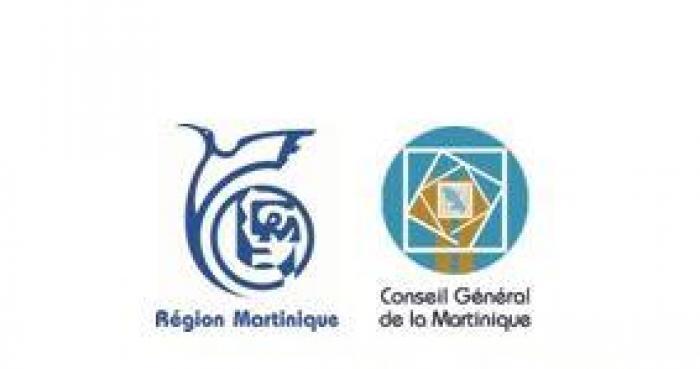 Un site internet pour tout savoir sur la collectivité territoriale de Martinique !