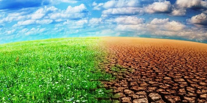 Un séminaire sur l'adaptation au changement climatique