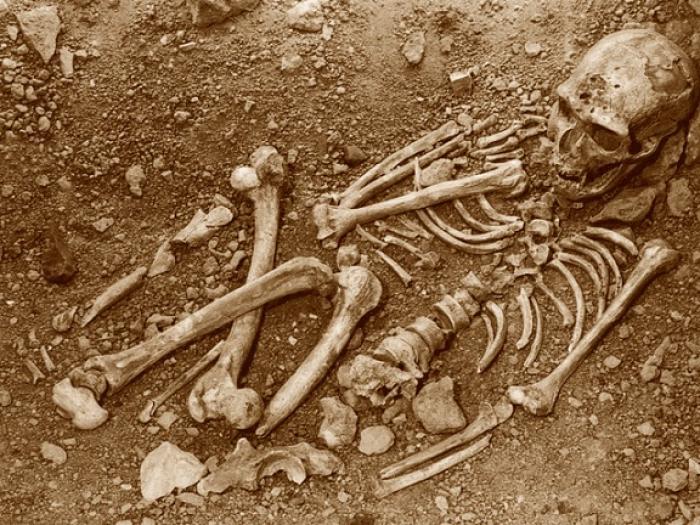Un squelette inconnu retrouvé au Moule