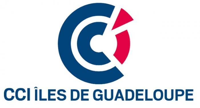 Une commission ad'hoc pour diriger la Chambre de commerce et d'industrie des îles de Guadeloupe