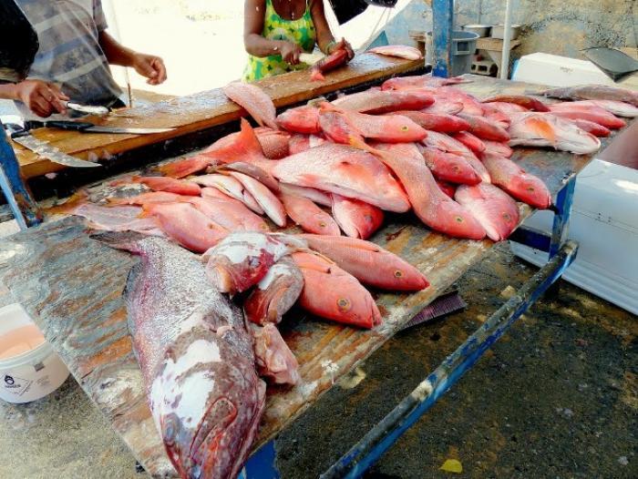 Une halle à poissons dérobée à Anse-Bertrand