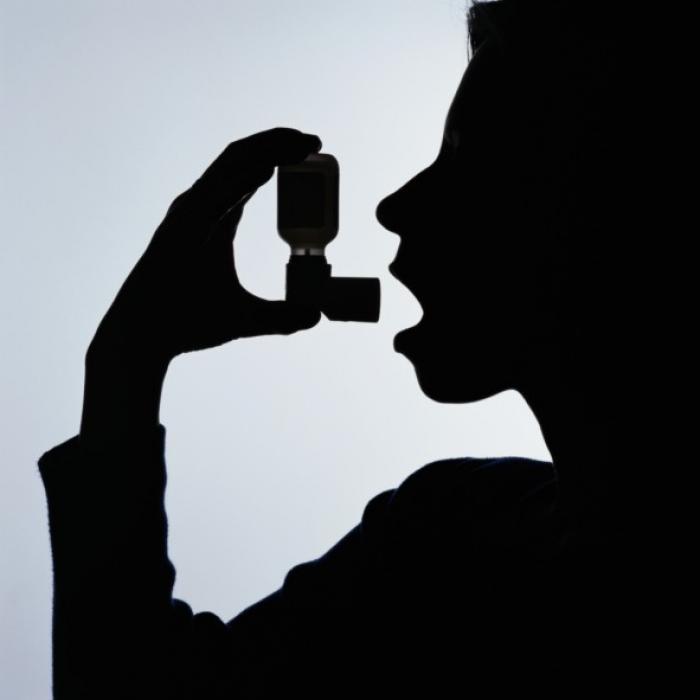 Une pétition pour sauver l'école de l'asthme