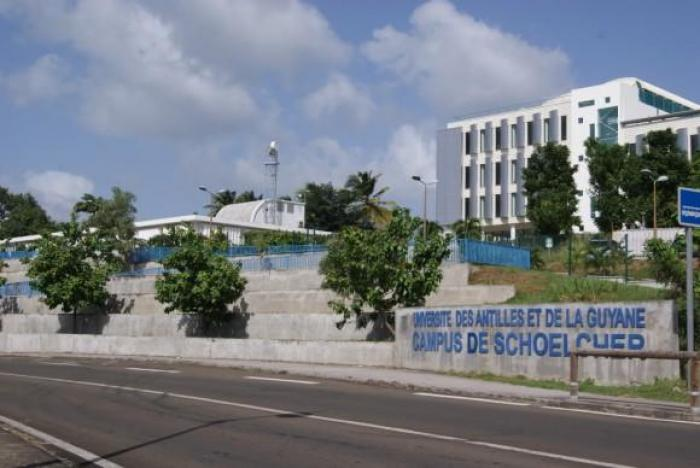 Université des Antilles : un amendement fait débat