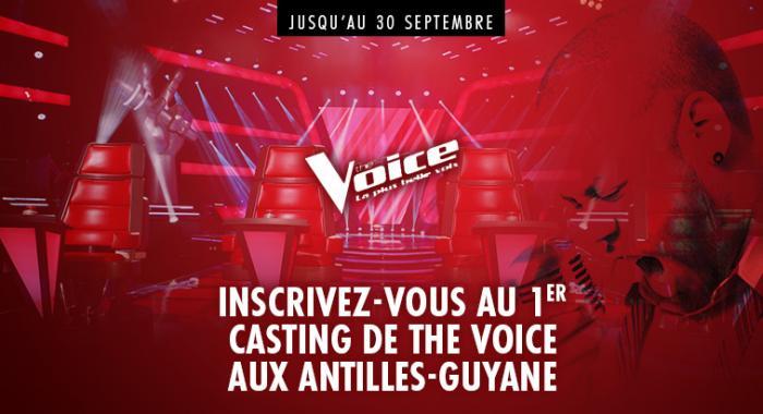 """Voulez-vous devenir """"The Voice"""" ?"""